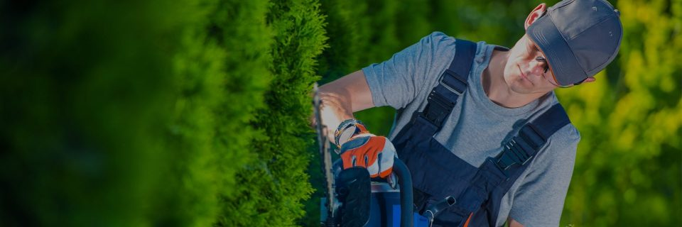 Over 30 years of Landscaping & Exterior Design experience